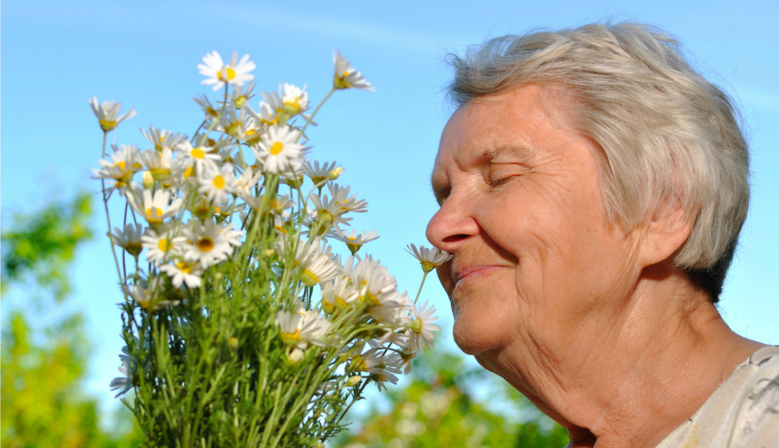 losing sense of smell Can changes in the sense give us clues to future memory problems  you have talked about losing your sense of smell, what about the opposite no smell.