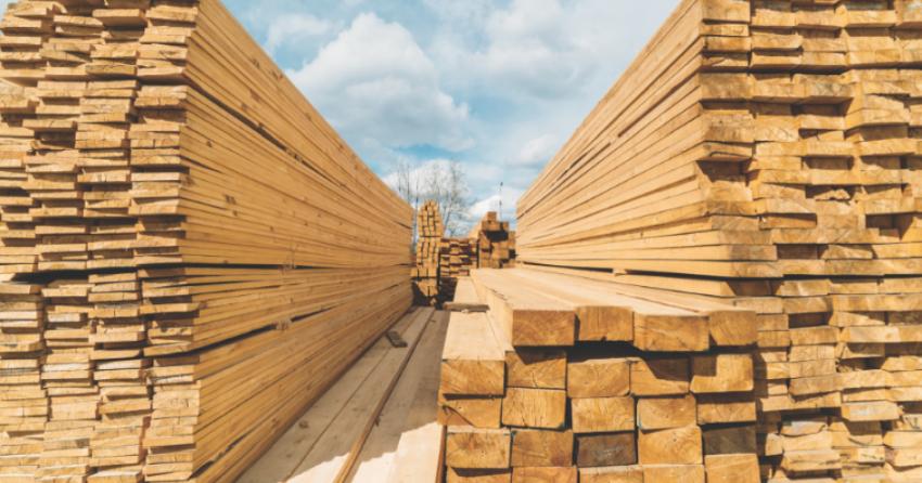 Why is lumber soooo expensive?