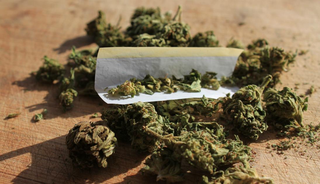 legalizing marijuana debate essay