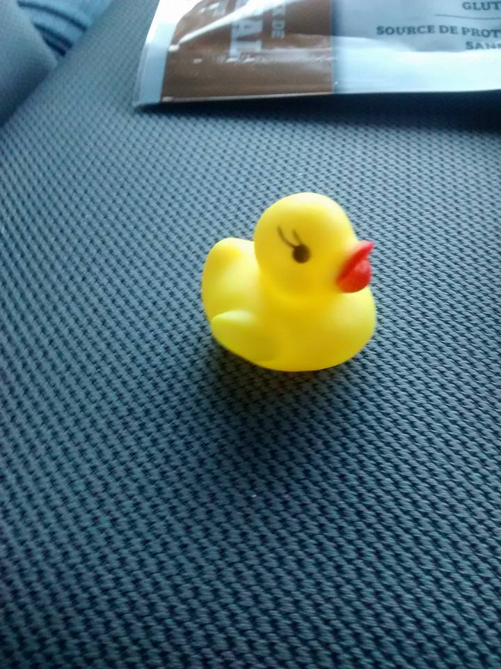 "<who> ""My lucky rubber ducky I got from my gf Victoria Leigh McRae but left my box of all my sentimental items,"" said Stephane Simard."