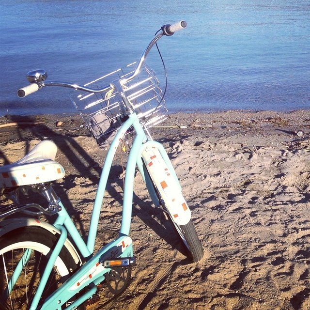 <who> Photo Credit: Chloe Szakacs </who> Szakacs bike was stolen from her gated backyard.