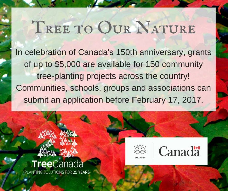 <who>Photo Credit: Tree Canada Facebook page