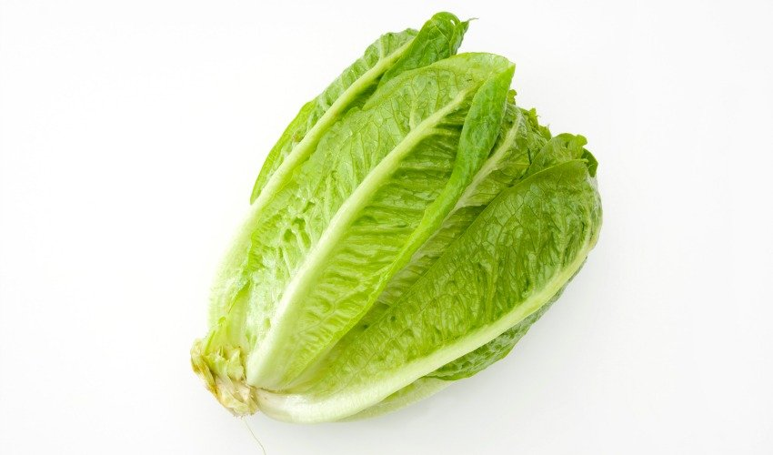 Canadian officials approaching romaine lettuce warning differently than U.S.