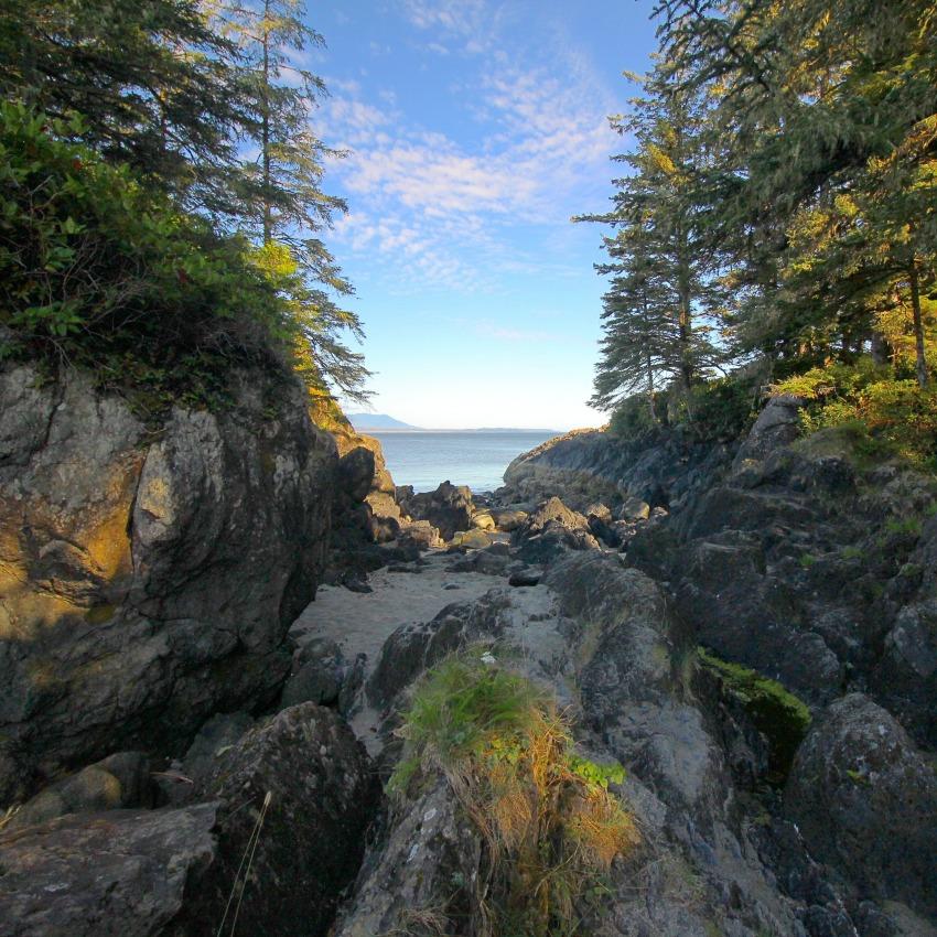 Beaches Vancouver Island: Take A Hike... To This Vancouver Island Beach