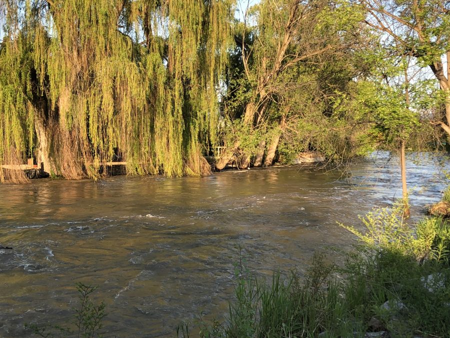 <who>Photo credit: KelownaNow</who> Mission Creek near Lakeshore Bridge