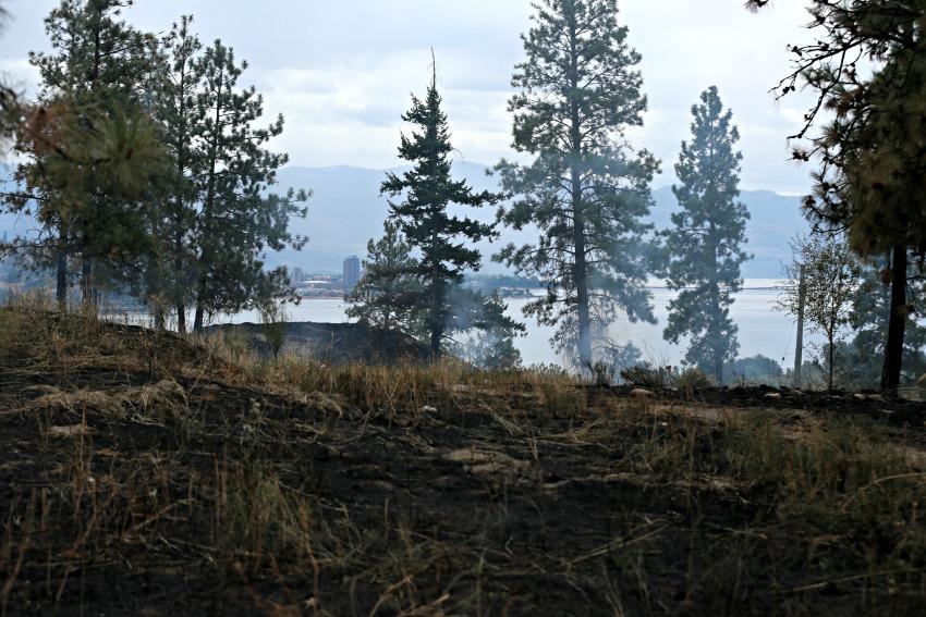 Bear Creek fire remains under intense scrutiny