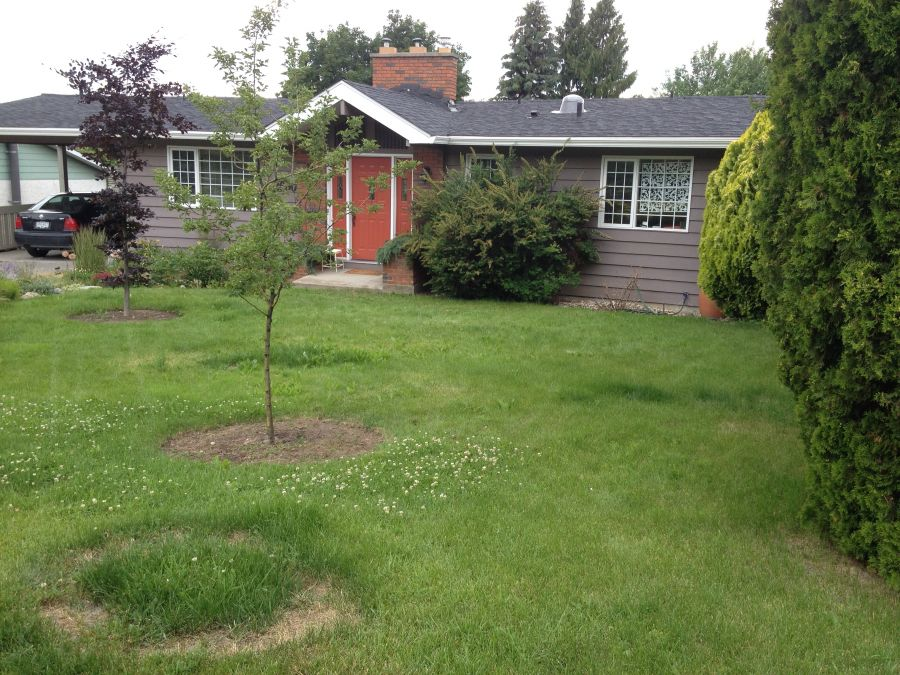 Discover the beauty of xeriscape in the dry Okanagan