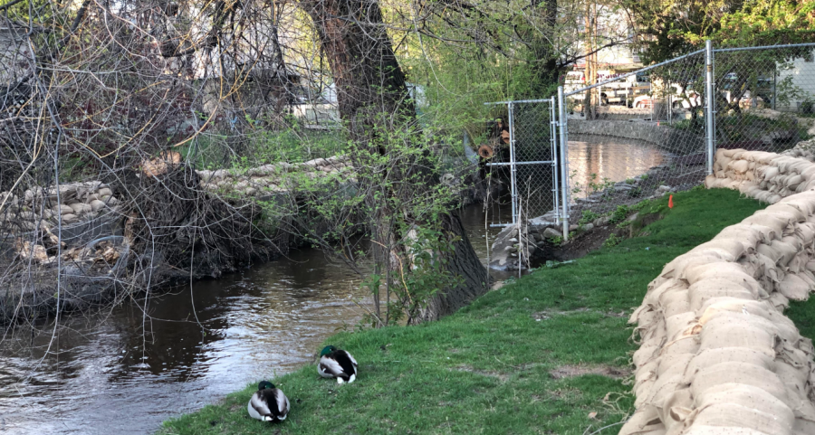 <who>Photo credit: KelownaNow</who> Mill Creek at Buckland Avenue at 6:30 a.m. on May 1, 2018.