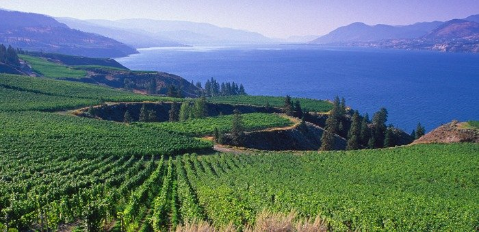 Okanagan Named Number One Wine Destination in World
