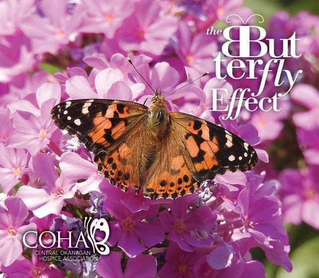 2019 Butterfly Effect