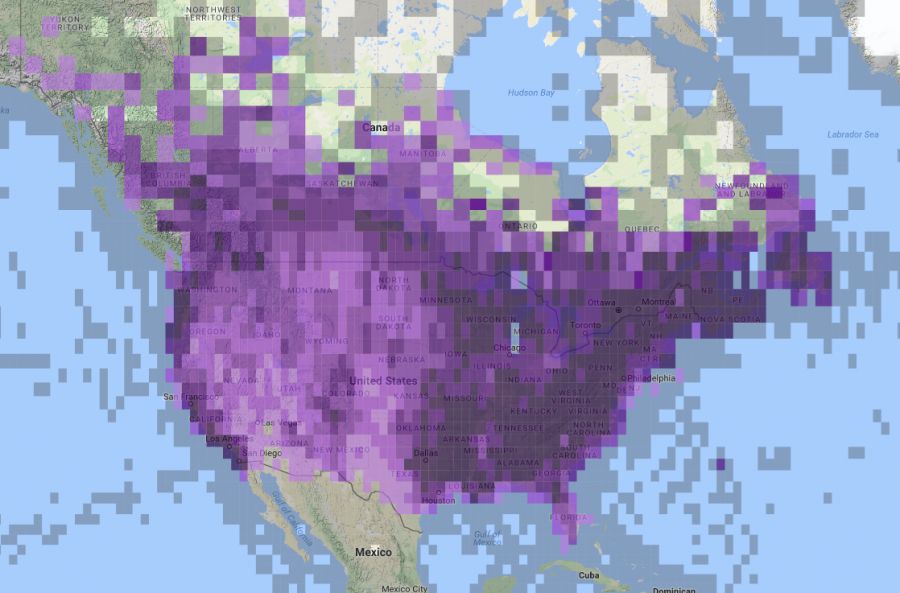 <who> Photo Credit: Screenshot of eBirds Map. </who> eBird reports of American Crow in North America, 2008-2018.