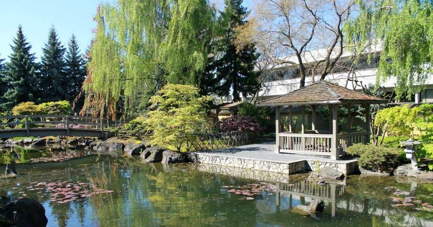 Kasugai gardens ready to open for Koi pond kelowna