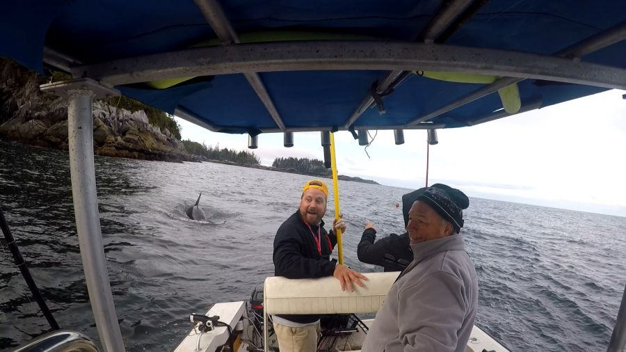 VIDEO: Kelowna man battles killer whale for massive catch near Bella Bella