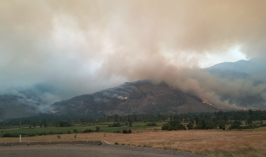 <who>Photo Credit: BC Wildfire Service</who>Photo taken of Snowy Mountain wildfire at 06:15 a.m., east flank south of Cawston.