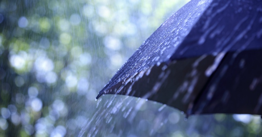 Showers and windy conditions in the forecast today for Kelowna - KelownaNow