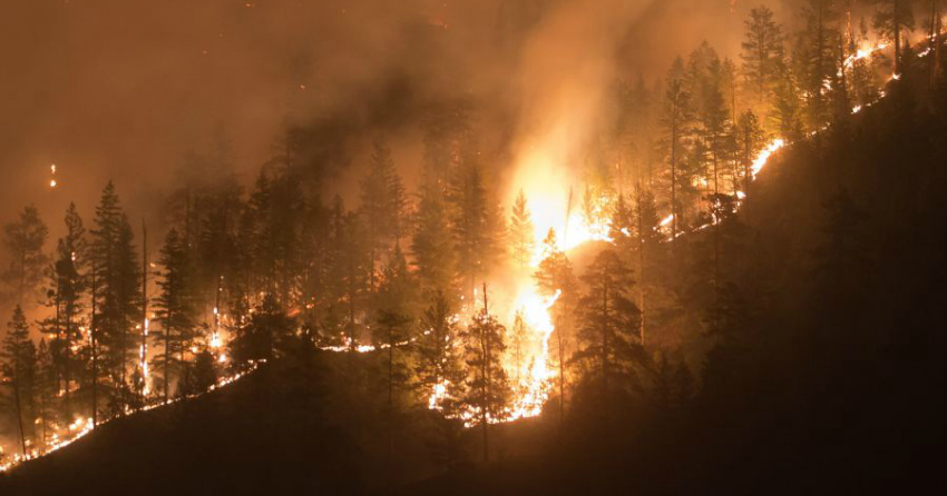 Lack of rain in Southern BC a risk but 'normal spring fire conditions' expected overall: BCWS report