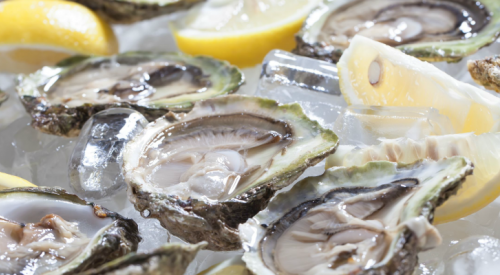 Contaminated B.C. oysters cause illness outbreak