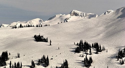 Kimberley Backcountry Skier Identified After Killed in Avalanche
