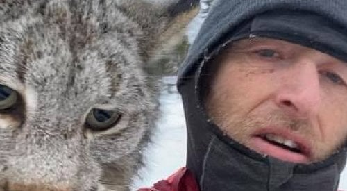 VIDEO: BC man grabs lynx by the scruff after attack on farm chickens