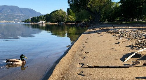 More sun and heat for the Okanagan today