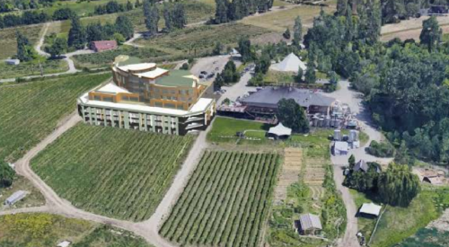 Summerhill Winery's proposed culinary college receives nod of support from city