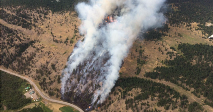 Wildfire near Monte Lake at 100 hectares, dozens of properties evacuated