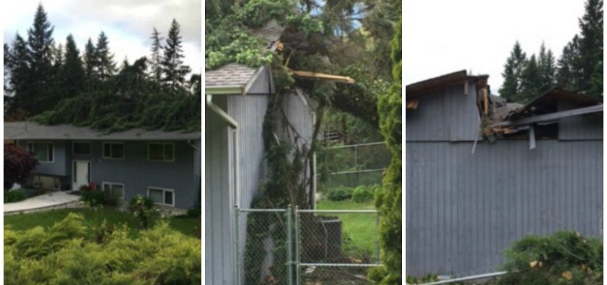 Clifton roof destroyed by windstorm